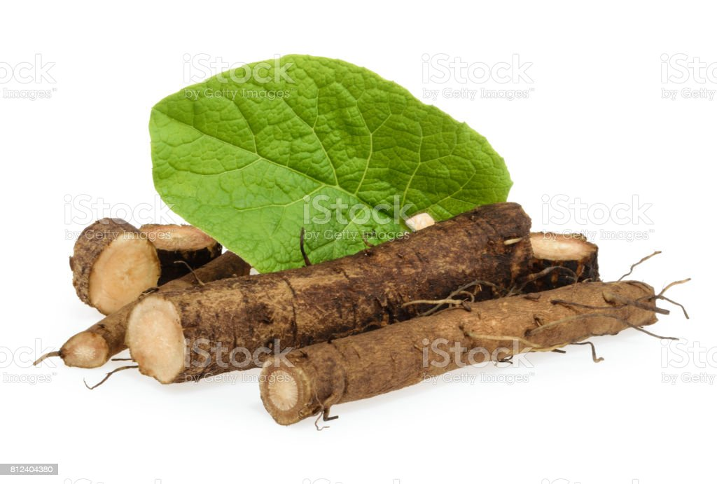 Burdock roots isolated on white background - foto stock