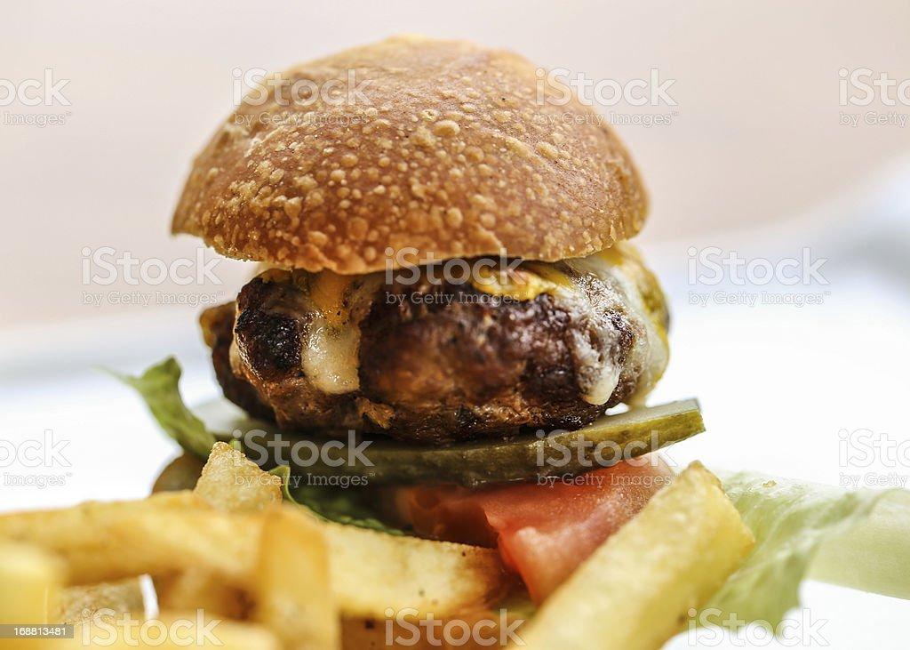 burger and potato fries royalty-free stock photo