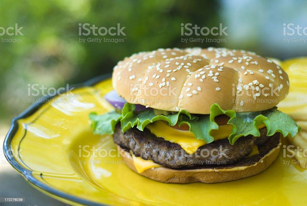Burger & Fries! royalty-free stock photo