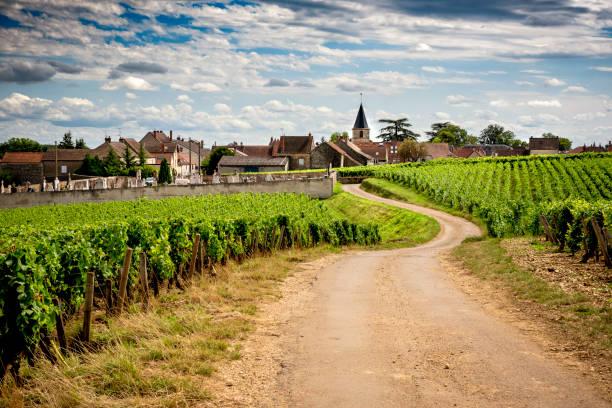 burgund, eine panoramastraße, die die weinregion durchquert und uns die großen produzenten und ihren weinberg kennen lässt. frankreich - bordeaux wein stock-fotos und bilder