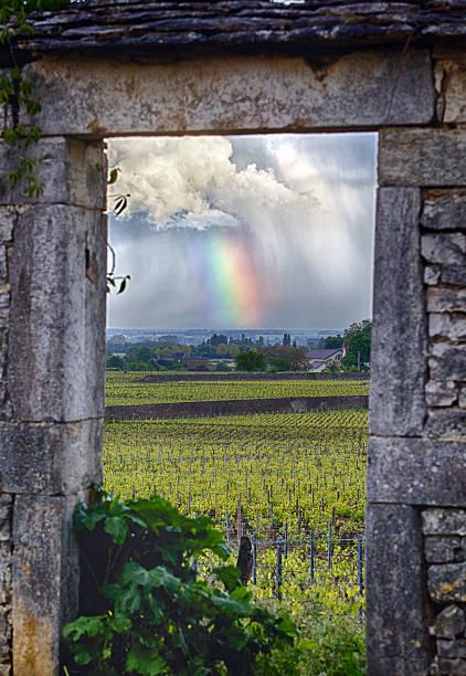 Burgundy Region in France stock photo
