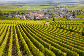 Burgundy is a historical region in east-central France. It's famous for its Burgundy wines as well as pinot noirs and Chardonnay, Chablis and Beaujolais.