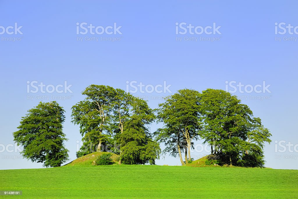Burial Mounds royalty-free stock photo