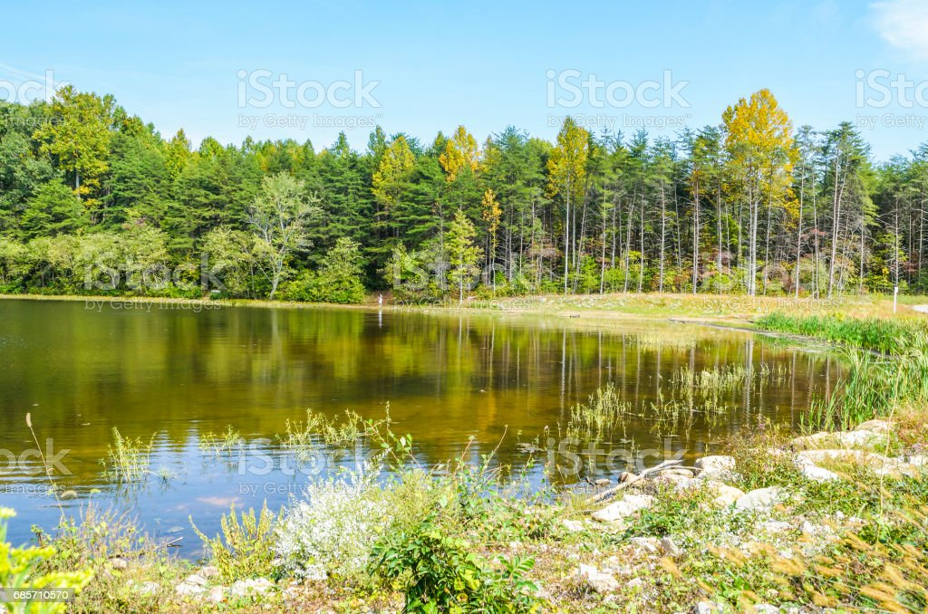 Burke Lake landscape in Virginia with water during summer in peaceful landscape stock photo