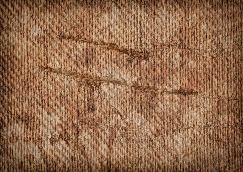 This Hi-Res scanned image of Primed Coarse Burlap Canvas Reverse Side, Multiple Slit Grunge Texture, is excellent choice for implementation in various CG design projects.