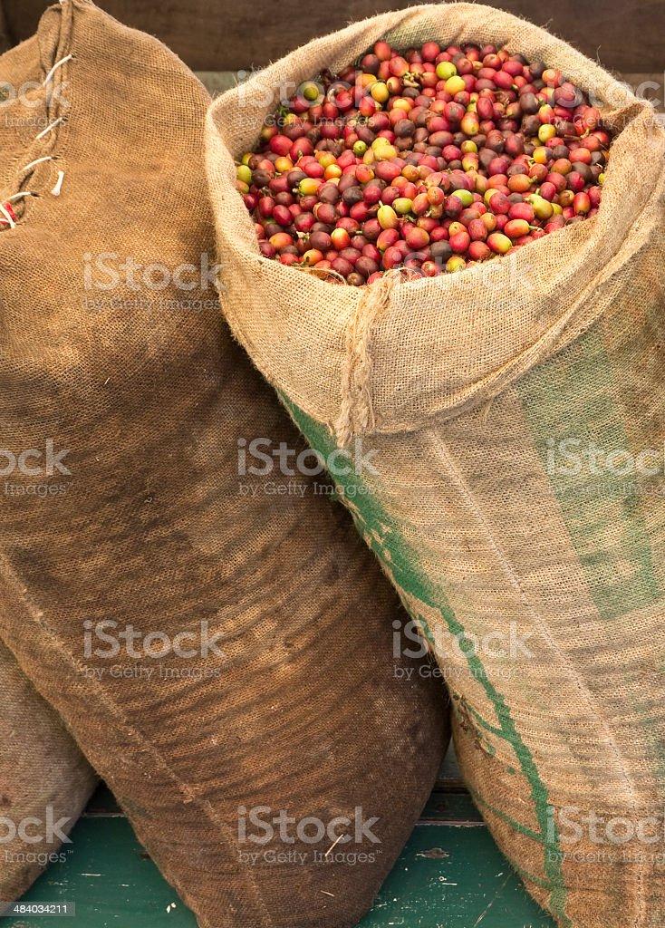 Burlap Coffee Bags stock photo