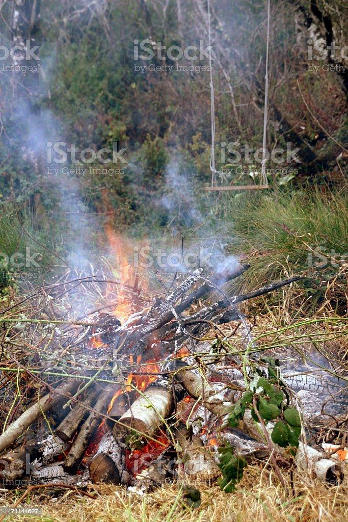 Burn Pile royalty-free stock photo
