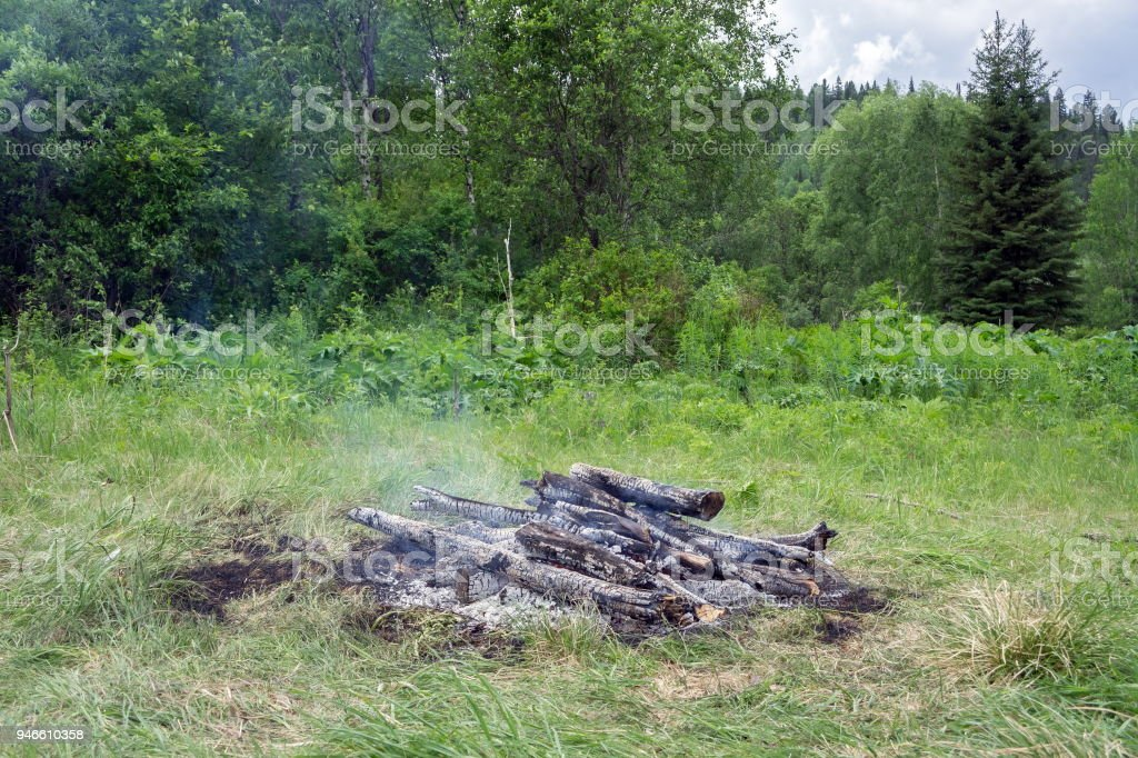 Burned bonfire on a green glade, among the forest. stock photo