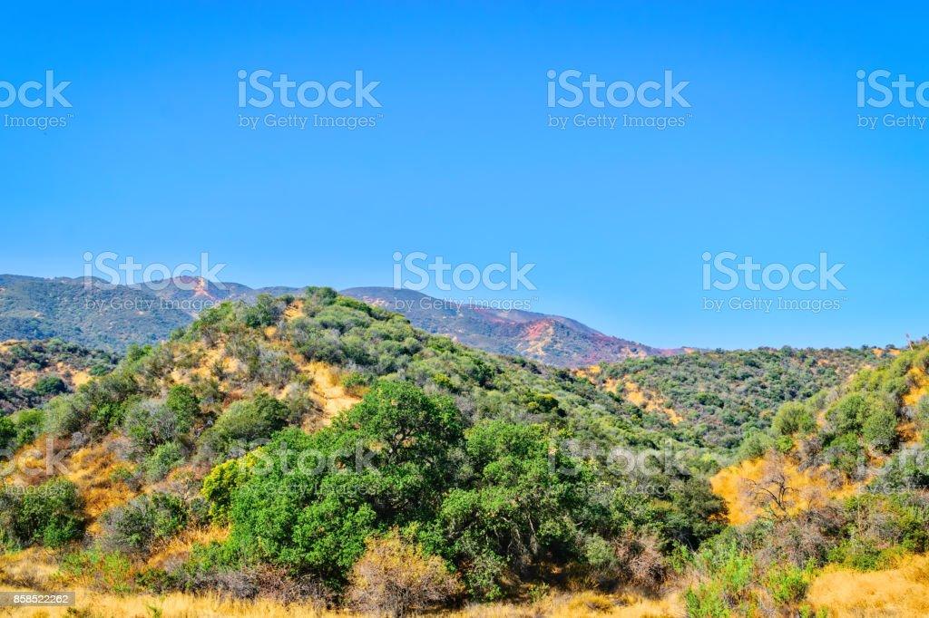 Burned hillsides and fire retardant stock photo