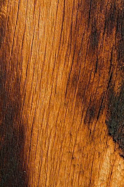Burned Wood stock photo