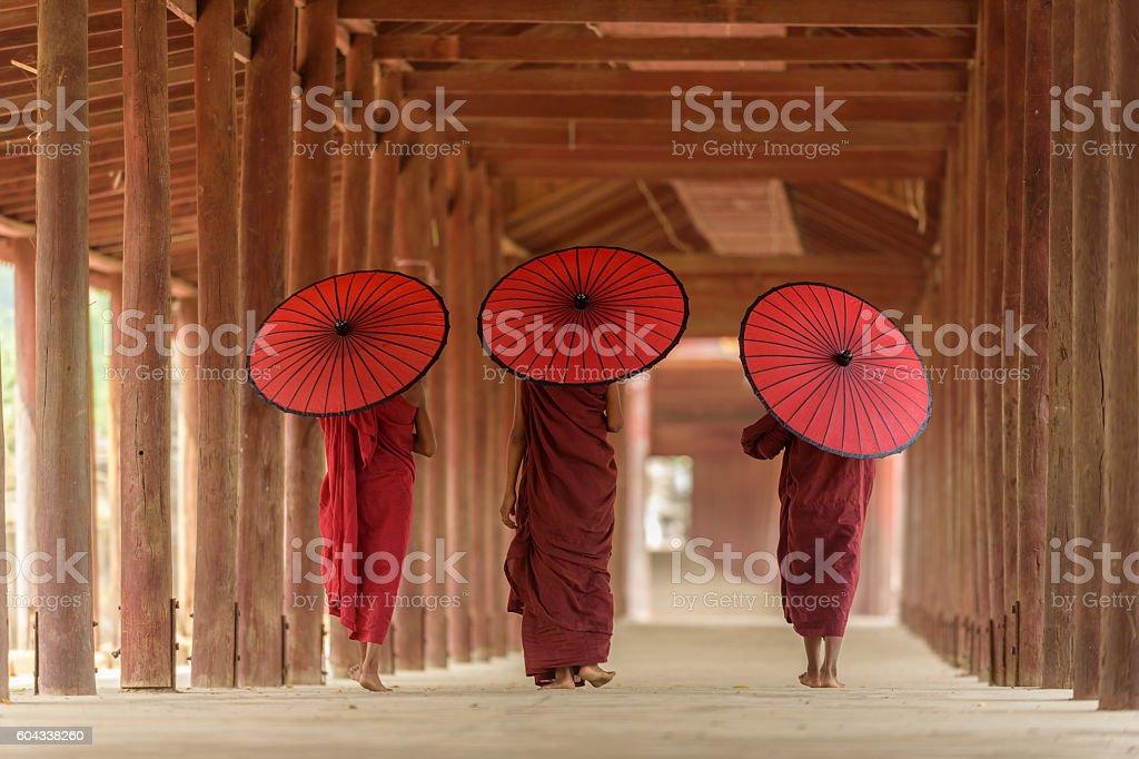 Burnese Buddhist novices stock photo
