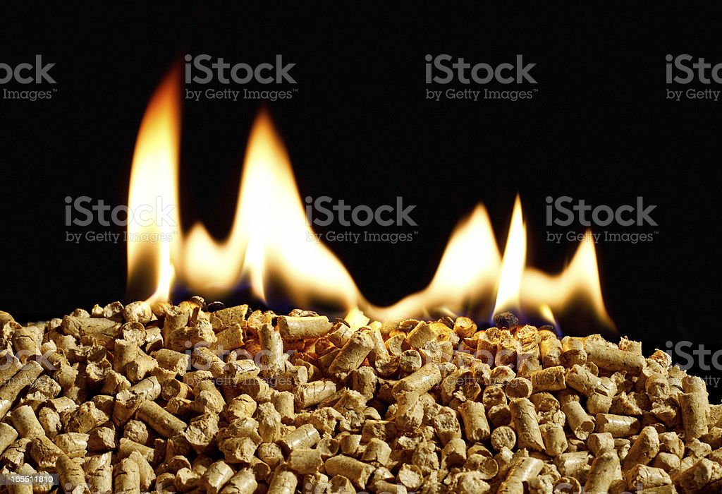 burning  biomass fuel a renewable alternative source of energy stock photo