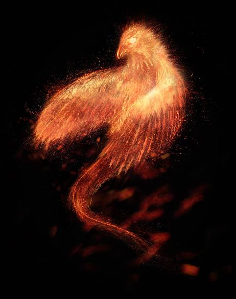 Quema pájaro Phoenix aislado - foto de stock