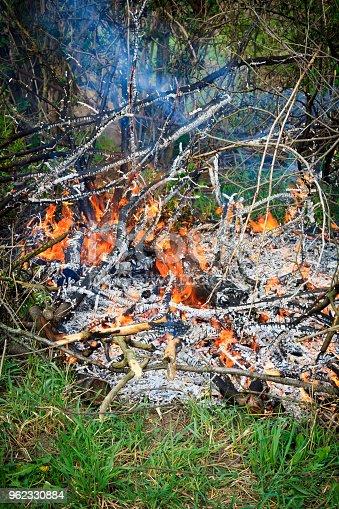 istock burning bonfire among the green grass 962330884