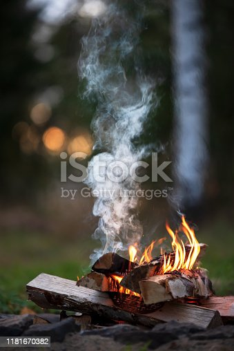 Burning campfire, birch forest in the background