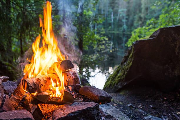 bruciare il fuoco di accampamento  - falò foto e immagini stock