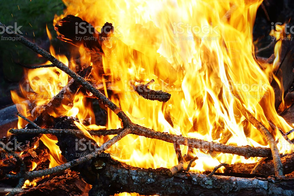 Burning campfire with yellow and red flames stock photo