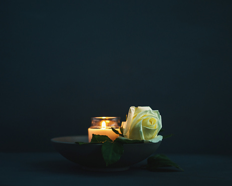Burning candle with white rose in remembrance