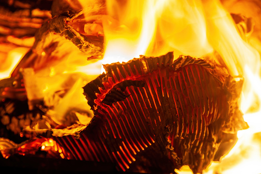Burning corrugated cardboard and firewood in the fireplace close-up