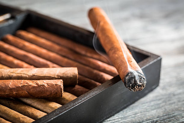 Burning cigar with smoke on wooden humidor stock photo