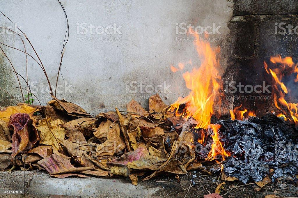 Burning dry grass royalty-free stock photo