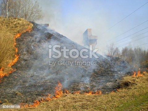 istock Burning dry grass. 626488158