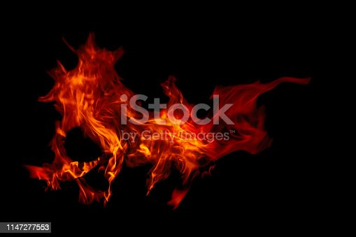 Burning fire flames isolated on black ,Bonfire in the forest