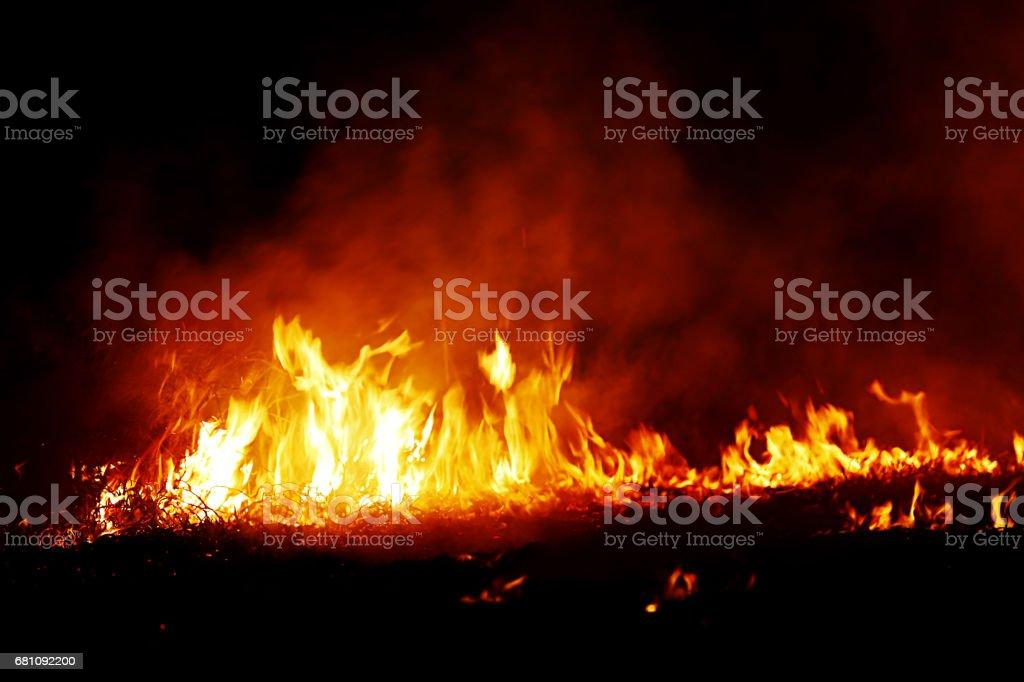 Burning fire isolated on black background royalty-free stock photo