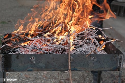 burning firewood. open fire on burning brushwood from grapevine. the vines will make good coals for shashlik (barbecue)