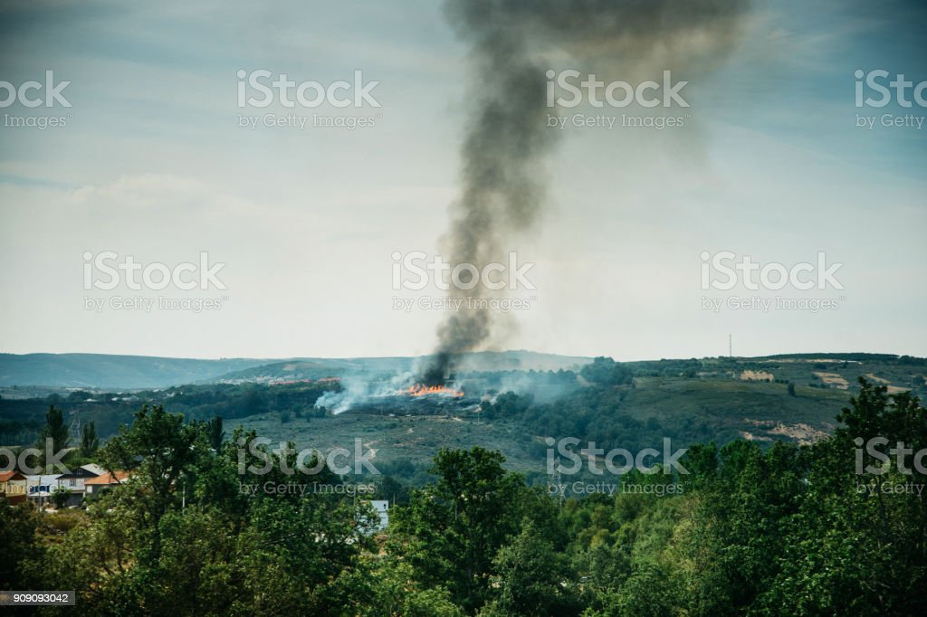 Burning forest in countryside stock photo