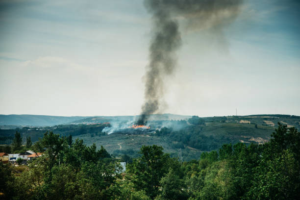 Burning forest in countryside Fire and heavy smoke, burning forest in countryside, Spain fire natural phenomenon stock pictures, royalty-free photos & images