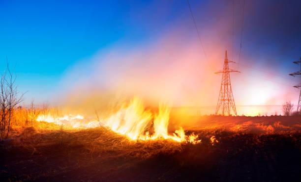 brandend gras in het veld - bosbrand stockfoto's en -beelden