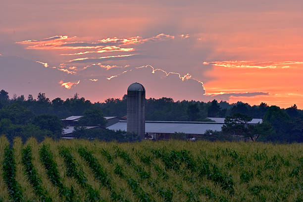 North Carolina Himmel brennen – Foto