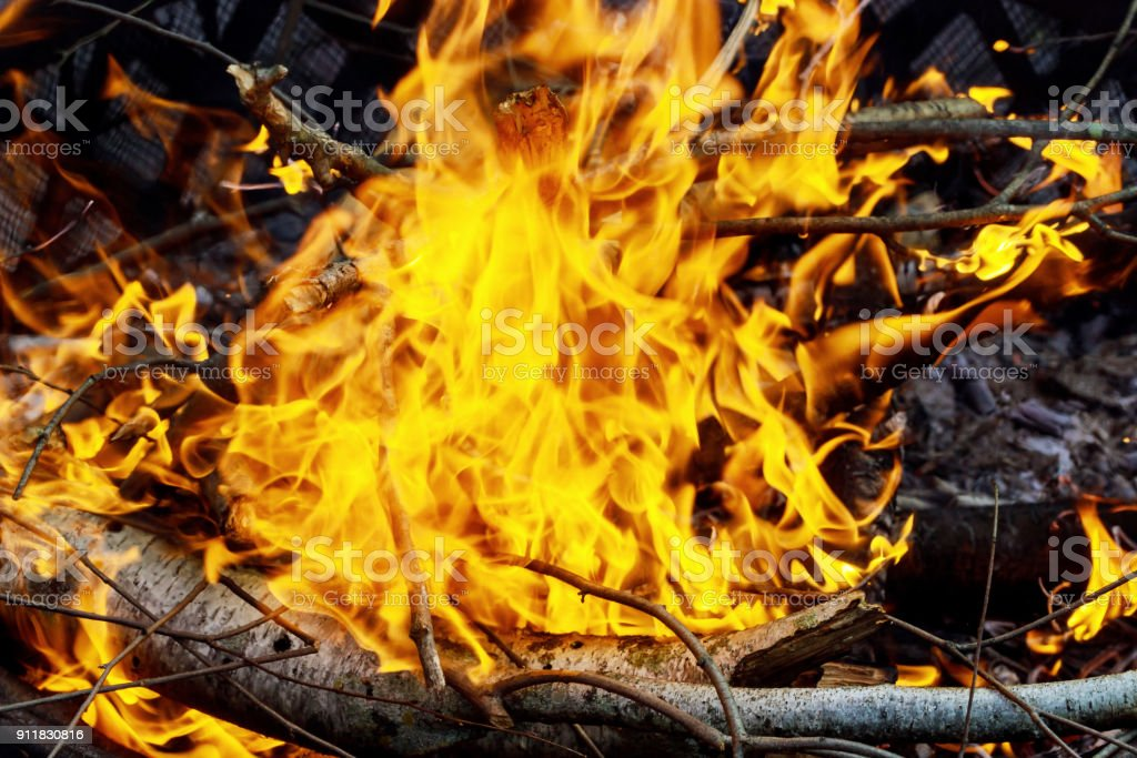 burning of thin dry grass during incendiary fire, close-up stock photo