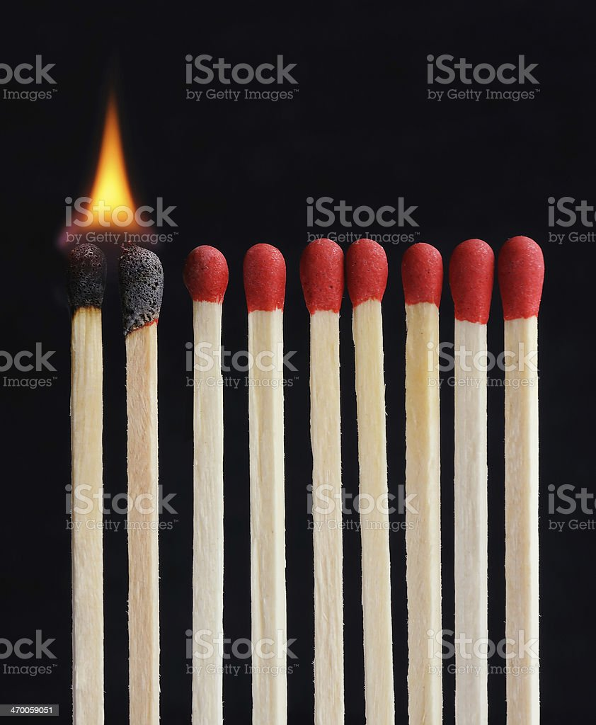Burning row of matches isolated black stock photo