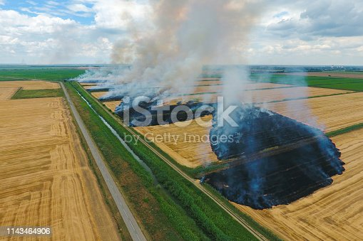 istock Burning straw in the fields of wheat after harvesting 1143464906