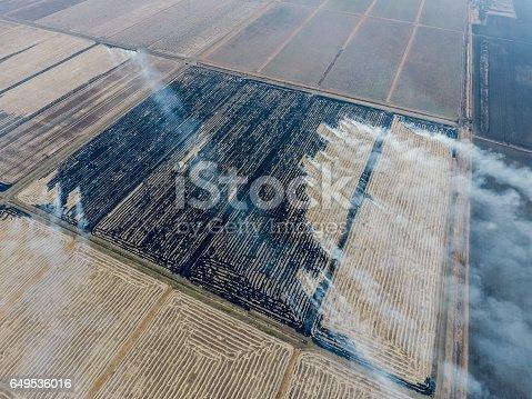 istock Burning straw in the fields 649536016