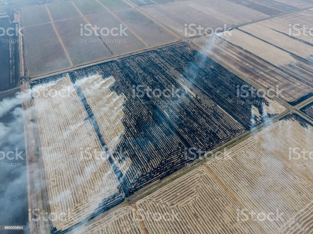 Burning straw in the fields stock photo