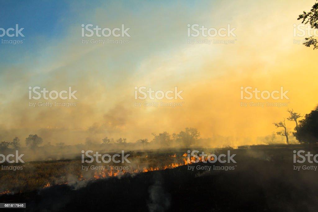 Burning the fields stock photo