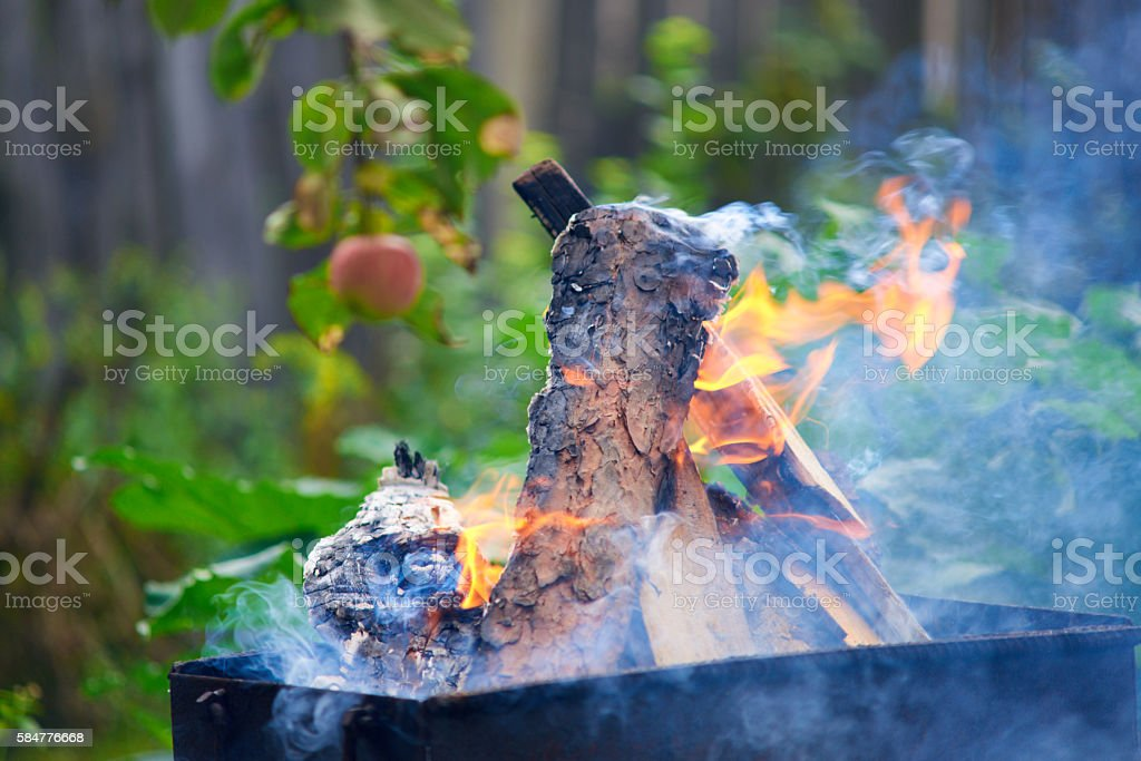 Burning wood in a brazier. Fire, flames. stock photo
