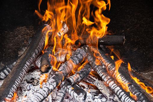 Burning wood logs on stone furnace