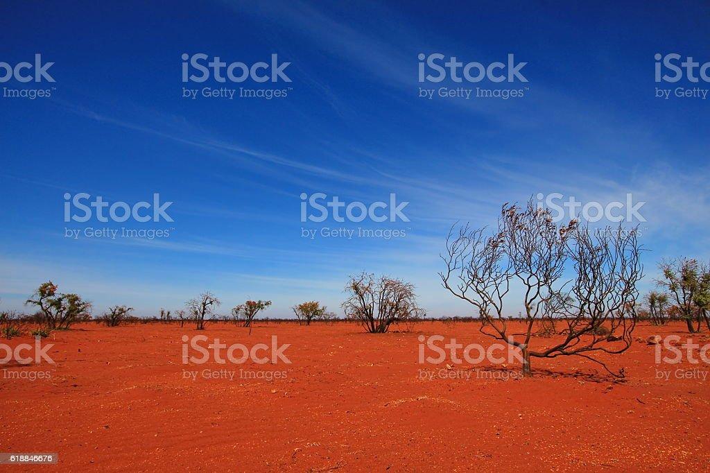 Burnt desert in Australia stock photo
