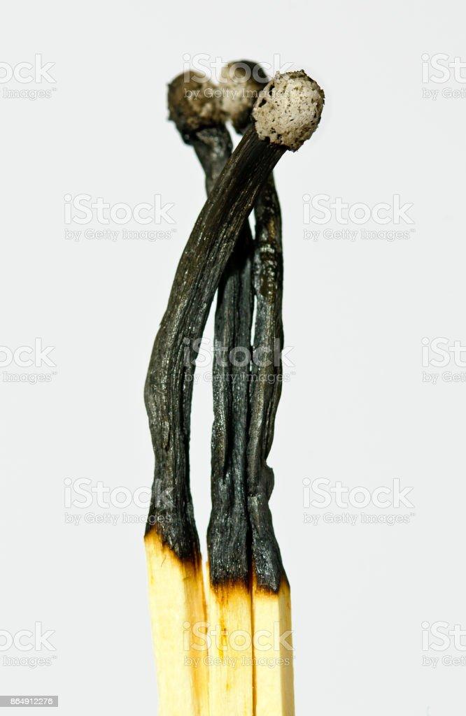 burnt down matches stock photo