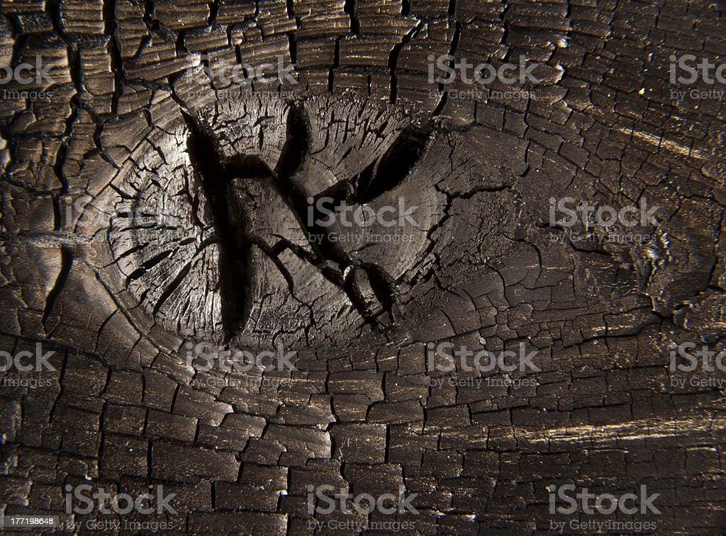 Burnt Knot Wood Macro royalty-free stock photo