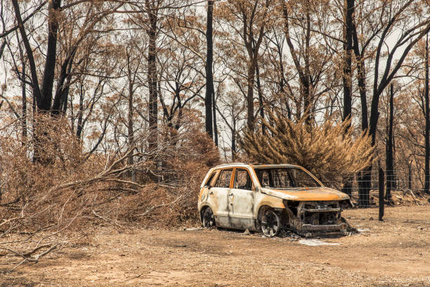 Burnt out car during out of control bushfire stock photo