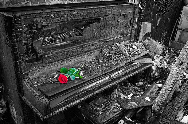 Burnt piano with red rose flower stock photo
