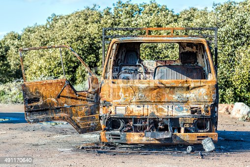 istock Burnt truck surrounded by nature 491170640