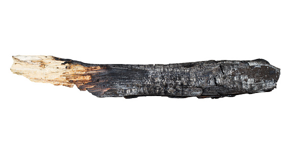 front view of burnt charred wooden log isolated on white background