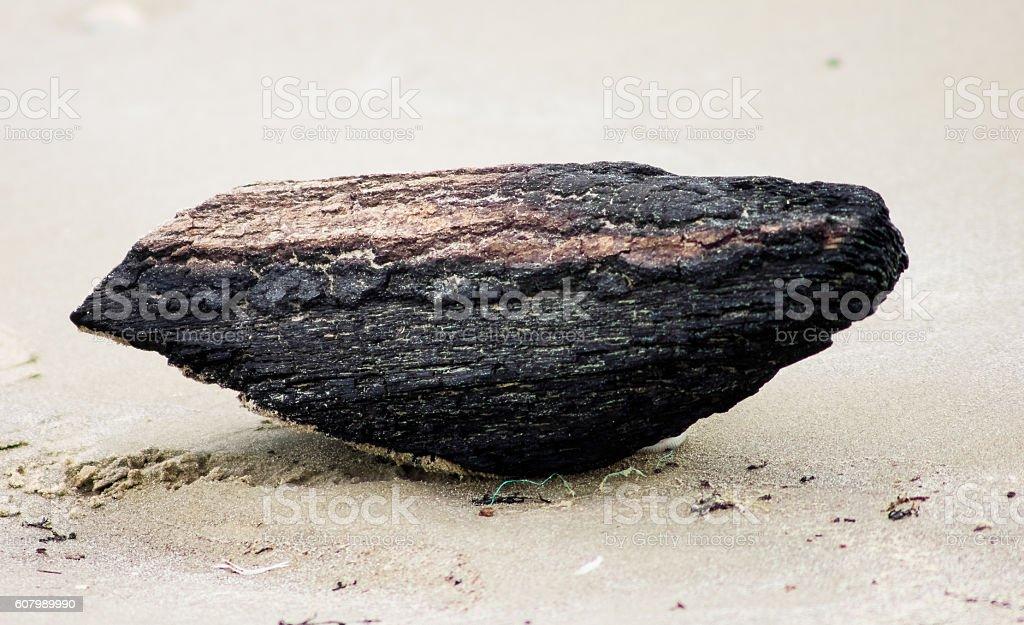 Burnt wood on beach stock photo