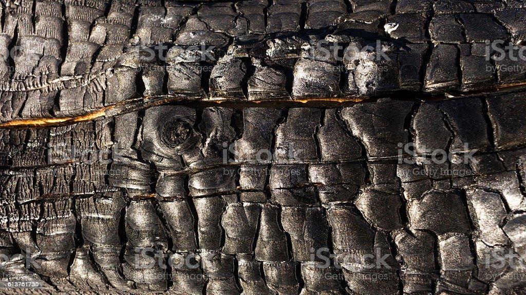 Burnt Wood stock photo